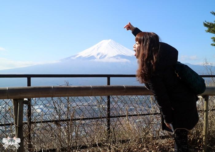 《旅遊*日本東京》2016Day3~眺望富士山!天上山公園kachikachi