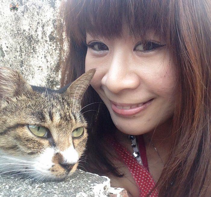 貓咪餐廳貓咪咖啡館懶人包。台北篇|貓奴必訪!