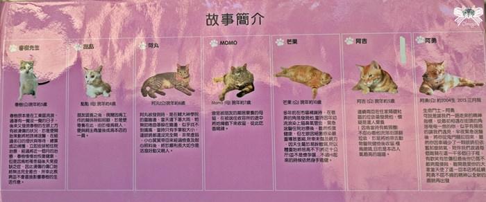 貓故事和食坊