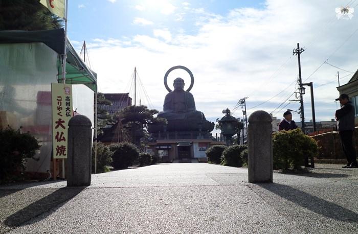 《旅遊*日本高岡市》高岡大佛|日本第一美男子也是三大佛之一