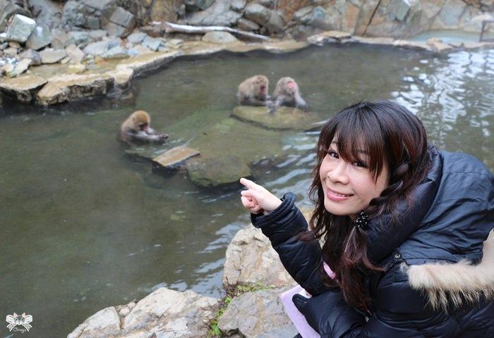 《日本北陸旅遊》地獄谷野猴公苑|偷窺雪猴泡溫泉,賞雪景與吸收山谷芬多精!
