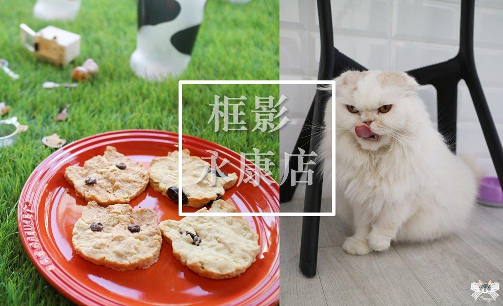 《台北貓咪咖啡》框影永康店|東門站二樓網美咖啡館,不限時有包廂有店貓