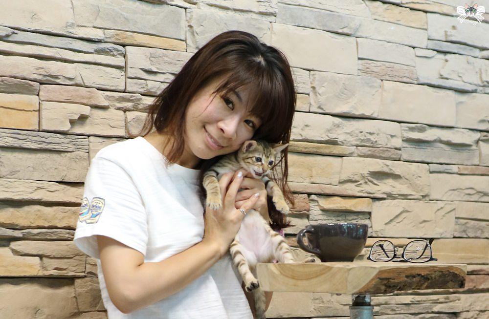 《中和貓咪咖啡》TIES|美式工業風的寵物與親子友善餐廳,店狗熱情店貓可愛!