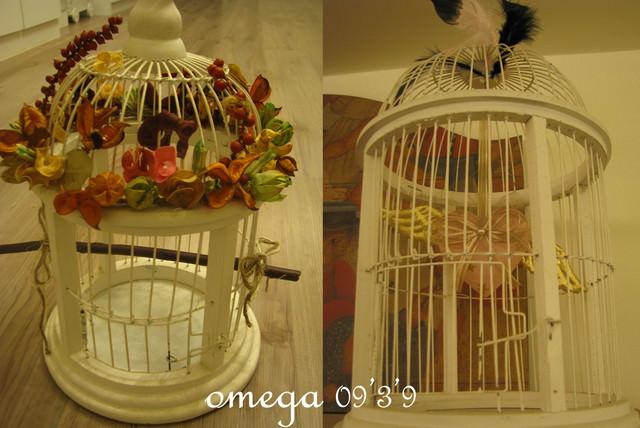 【公主殿】我家鳥籠不囚鳥