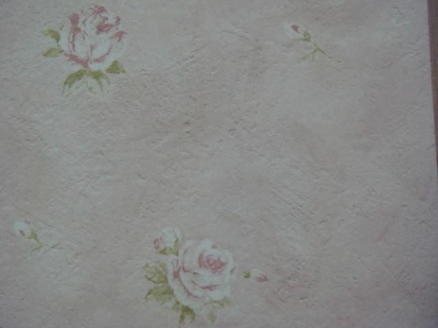 【公主殿】哪時愛上玫瑰花壁紙